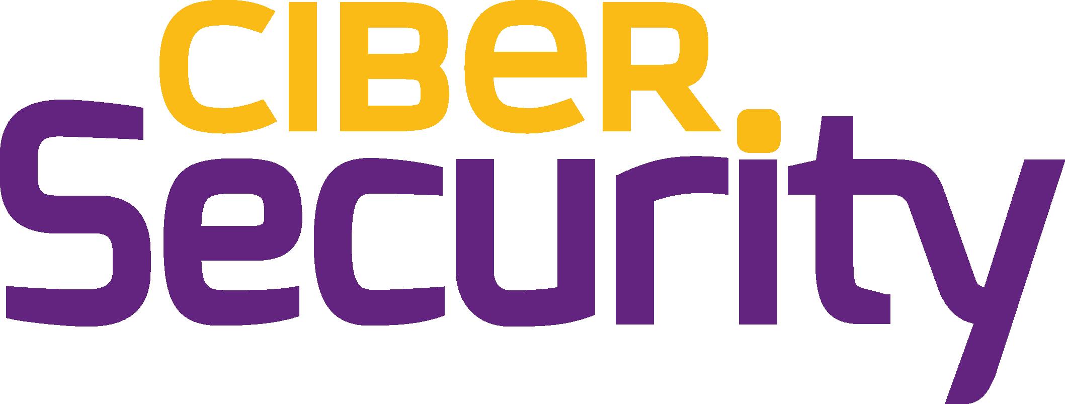 Ciber-Segurity